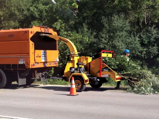 Commercial Tree Services-Bloomingdale FL Tree Trimming and Stump Grinding Services-We Offer Tree Trimming Services, Tree Removal, Tree Pruning, Tree Cutting, Residential and Commercial Tree Trimming Services, Storm Damage, Emergency Tree Removal, Land Clearing, Tree Companies, Tree Care Service, Stump Grinding, and we're the Best Tree Trimming Company Near You Guaranteed!